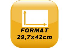 Calamite Foto 29,7x42cm
