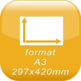 format A3